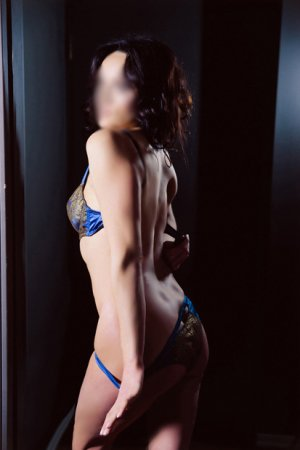 Heidemarie incall escort in Rodeo