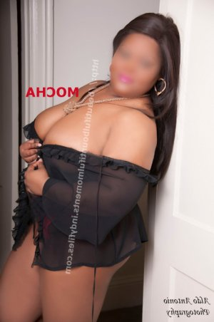 Falida escorts services in Chester